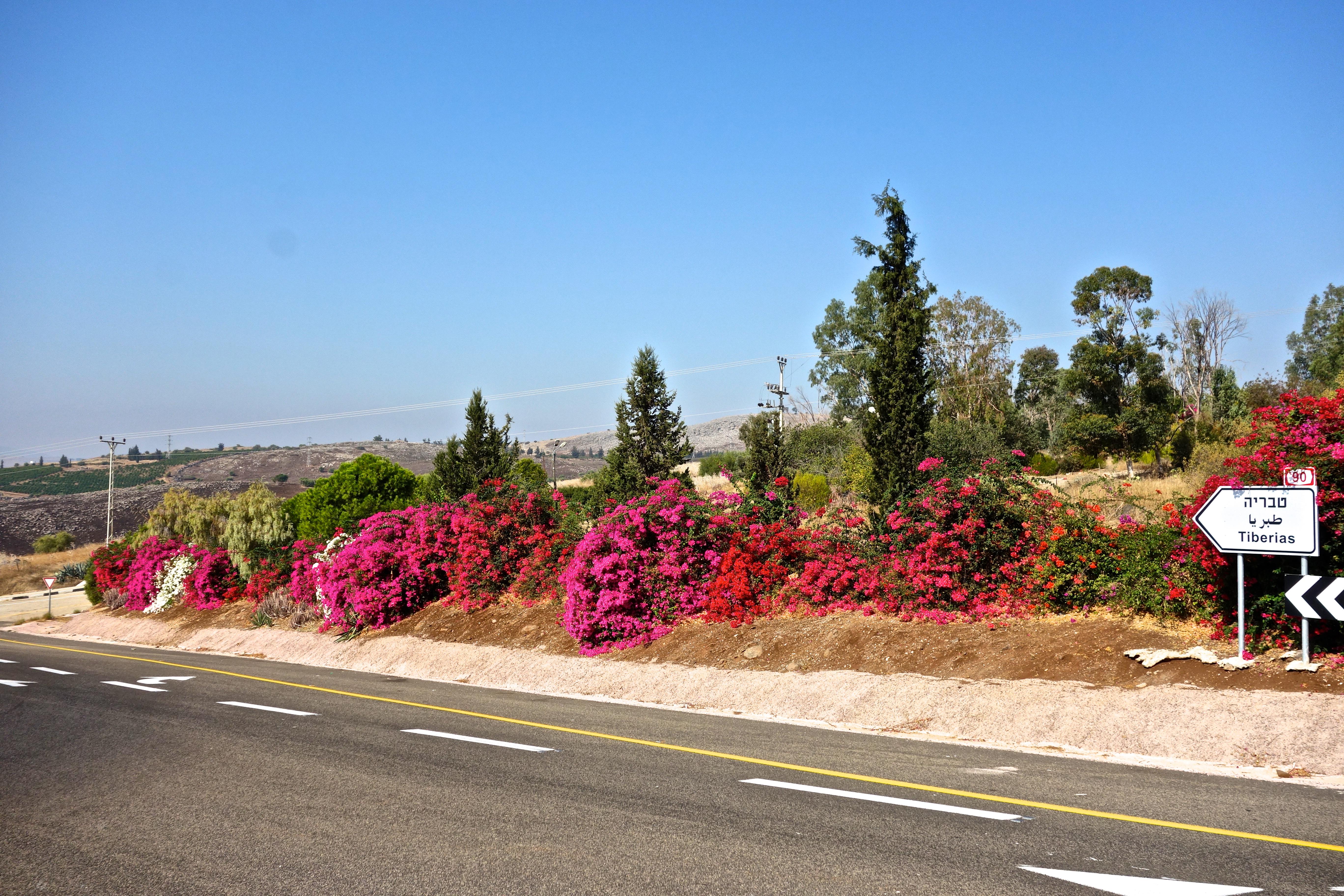 Tibériades – Golan – Nasareth | Flight Marquises